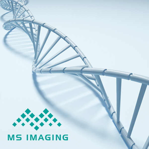 MS IMAGING